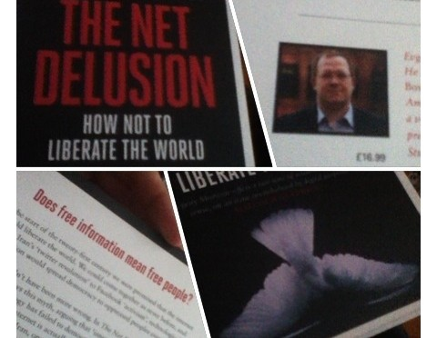 The net desilusion