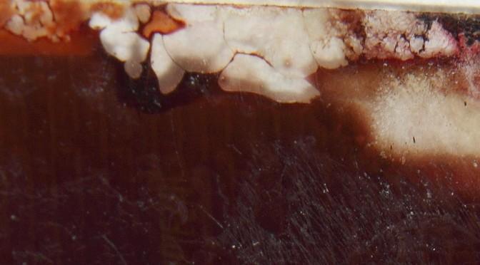 Negativo con hongos