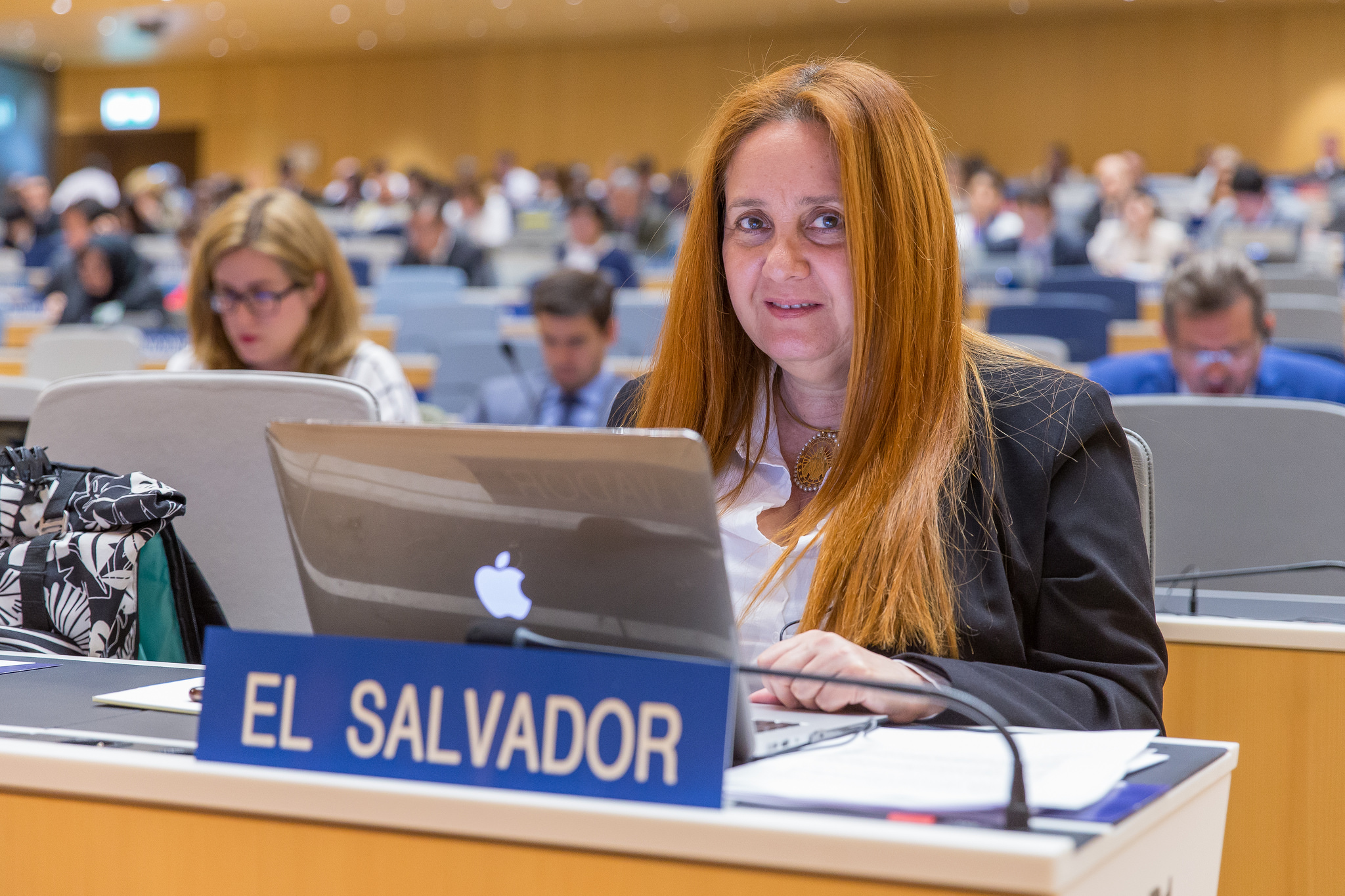 La delegada de El Salvador en el SCCR36, Diana Hasbún. Imagen tomada de Flickr por WIPO